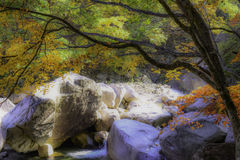 Dreamy Stream Seorak Autumn Leaves HDR abstract Royalty Free Stock Images