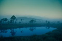 A dreamy swamp landscape before the sunrise. Colorful, misty look. Marsh scenery with a lake. Stock Photo