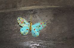 Dreamy turquoise beautiful butterfly on brown rustic stock photography