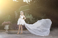 Dreamy Wedding Stock Images