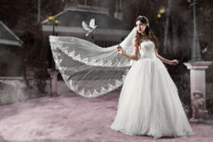 Dreamy Wedding Royalty Free Stock Photography