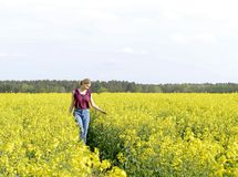 Dreamy young woman. In the rape field Royalty Free Stock Photos