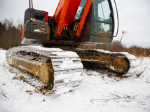 Dredge caterpillars in snow Stock Images