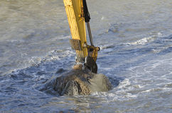 Dredging harbor with excavator Royalty Free Stock Image