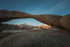 Drehbank-Bogen und die glühende einzige Kiefern-Spitze mit der Sierra Nevada Mountains During Sunrise in Alabama-Hügeln, einzige  stockfotos