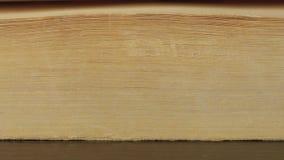 Drehen der Seiten eines alten Buches stock footage