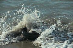 Drehen Sie herein das Meerwasser stockbild