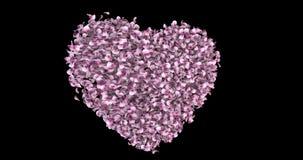 Drehende rosa Rose Sakura Flower Petals In Heart-Form Alpha Matte Loop 4k stock video