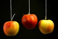 Drei Äpfel Stockfoto