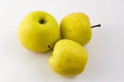 Drei Äpfel. Stockfoto