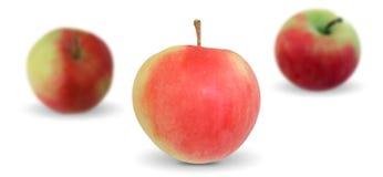 Drei Äpfel Stockbilder