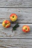 Drei Äpfel auf altem grauem Scheunenbrett stockbild