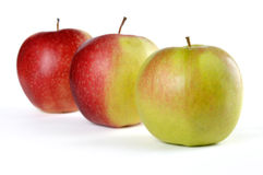 Drei Äpfel von Grünem zum Rot Stockfotos