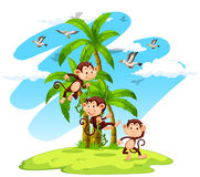 Drei Affen auf der Insel stock abbildung