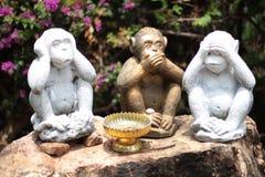Drei Affen -, die keine sind, sprechen Sie, kein sehen, kein hören Lizenzfreies Stockbild
