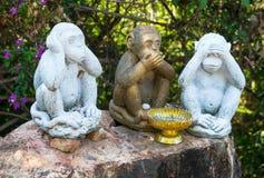 Drei Affen mit den verschiedenen Gesichtern -, die keinen sind, sprechen Sie, kein sehen, kein hören Stockfotos