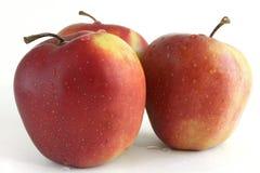 Drei Apple lokalisiert auf weißem Hintergrund mit Tropfen des Taus Lizenzfreies Stockbild