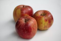 Drei Apple tragen Früchte lizenzfreies stockbild