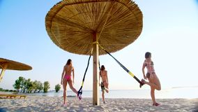 Drei athletisch, sexy junge Frauen in den Badeanzügen, die Lehrer, tuend trainiert mit Eignung trx System, TRX-Suspendierung stock video footage
