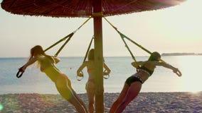 Drei athletisch, sexy junge Frauen in den Badeanzügen, die Lehrer, tuend trainiert mit Eignung trx System, TRX-Suspendierung stock video