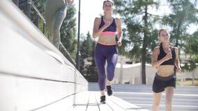 Drei athletische Mädchen, die im Park an einem sonnigen Sommertag rütteln stock video