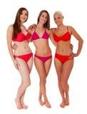 Drei attraktive Frauen im Bikini Stockfotografie