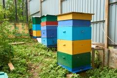 Drei Bienenstöcke lizenzfreie stockfotografie