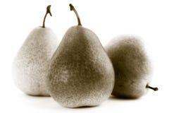 Drei Birnen auf einem weißen Hintergrund Stockfotos