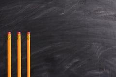 Drei Bleistifte und Tafel Stockbild