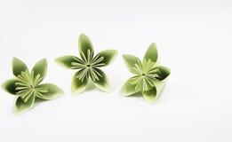 Drei Blumen aus pape heraus stockfoto