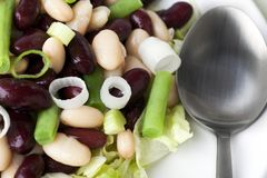 Drei Bohnen-Salat-Abschluss oben Lizenzfreie Stockbilder
