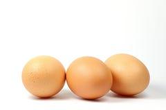 Drei braune Eier auf weißem Hintergrund Stockfotos