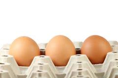 Drei braune Eier im Papierbehälter Stockbilder