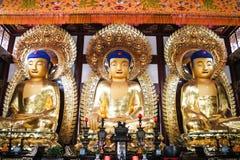 Drei Buddha-Statuen, Lianhuashan Lotus Hill, Guangzhou, China stockfotografie