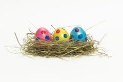Drei bunte Ostereier in einem Nest Stockfotografie