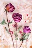 Drei Burgunder stiegen Blumen auf gemaltem zerknittertem gealtertem Papierhintergrundabschlu? oben, Feiertagseinladung oder Gru?k lizenzfreies stockfoto