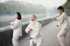 Drei chinesisches Volk, das Tai Ji Outdoors übt Stockfotos