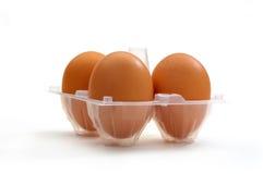 Drei Eier in der Verpackung Lizenzfreies Stockbild