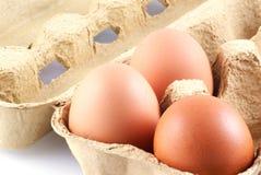 Drei Eier in einem Kasten. Stockfotos