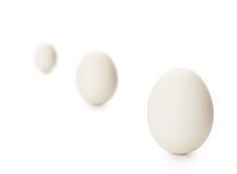 Drei Eier getrennt auf Weiß Lizenzfreie Stockbilder