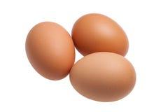 Drei Eier lokalisiert auf weißem Hintergrund Lizenzfreies Stockbild