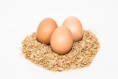 Drei Eier mit Hülsen Lizenzfreie Stockfotos