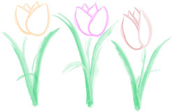 Drei einfache Tulpen - Vektor Stockfotografie