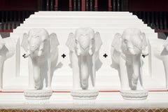 Drei Elefanten Stockbilder