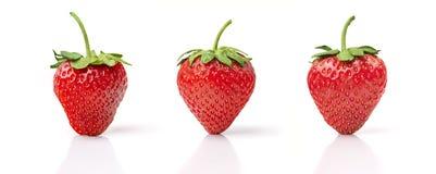 Drei Erdbeeren Stockbild