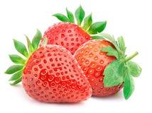 Drei Erdbeeren mit den Blättern lokalisiert Stockfotos