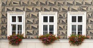 Drei Fenster mit Blumen Stockbild