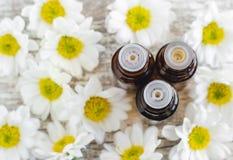 Drei Flaschen der wesentlichen Kamille ölen über hölzernem Hintergrund Aromatherapy und Badekurortkonzept stockfotografie