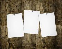 Drei Fotos auf hölzernem Vorstand lizenzfreie stockfotos