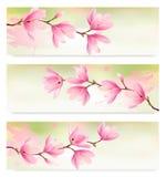Drei Frühlingsfahnen mit Blütenbrunch Lizenzfreie Stockfotografie